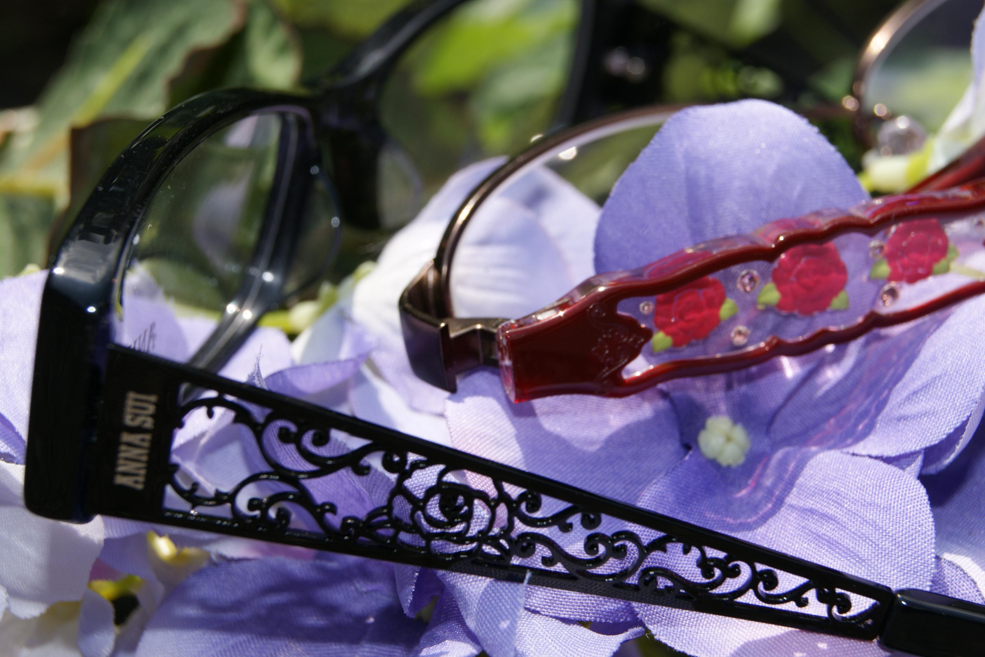Anna Sui   Haddonfield Eyewear
